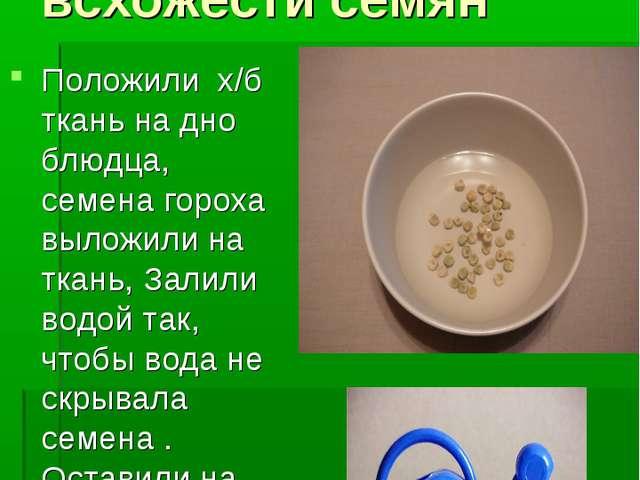 Опыт №2. Определение всхожести семян Положили х/б ткань на дно блюдца, семена...