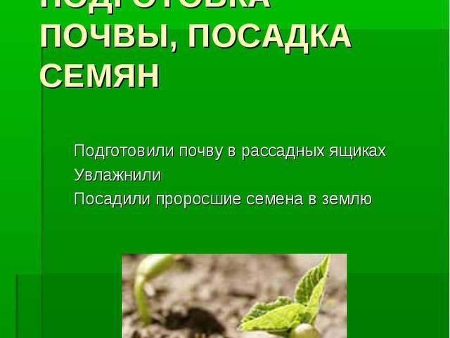 ОПЫТ №3. ПОДГОТОВКА ПОЧВЫ, ПОСАДКА СЕМЯН Подготовили почву в рассадных ящиках...