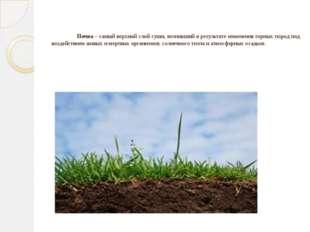 Почва– самый верхний слой суши, возникший в результате изменения горных пор