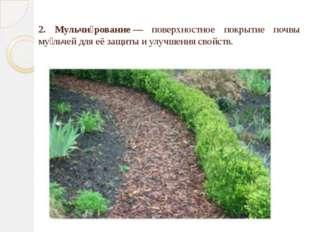 2. Мульчи́рование— поверхностное покрытие почвы му́льчей для её защиты и ул