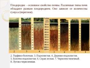 Плодородие - основное свойство почвы. Различные типы почв обладают разным пло