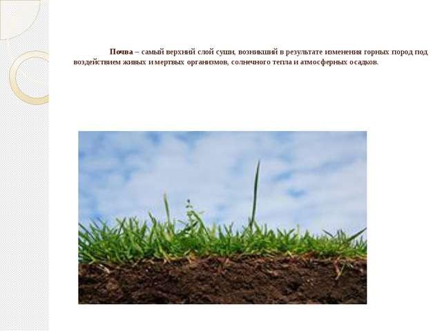 Почва– самый верхний слой суши, возникший в результате изменения горных пор...