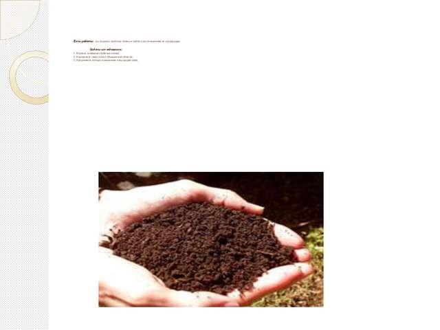 Цель работы: исследовать свойства почвы и найти пути повышения ее плодородия...