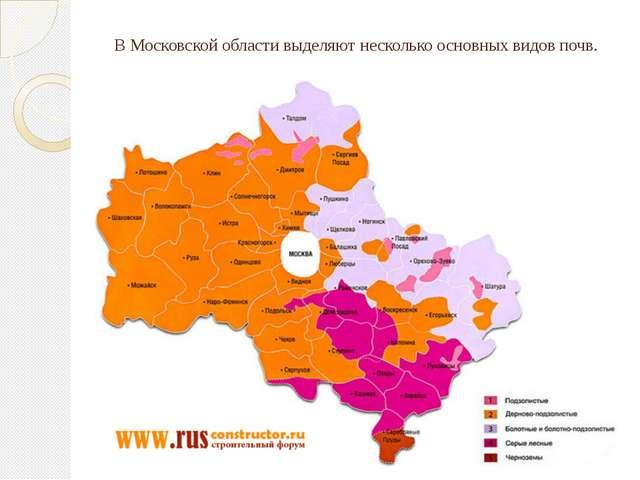 В Московской области выделяют несколько основных видов почв.
