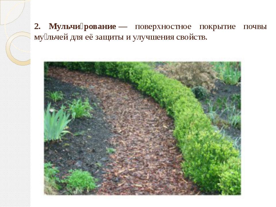 2. Мульчи́рование— поверхностное покрытие почвы му́льчей для её защиты и ул...