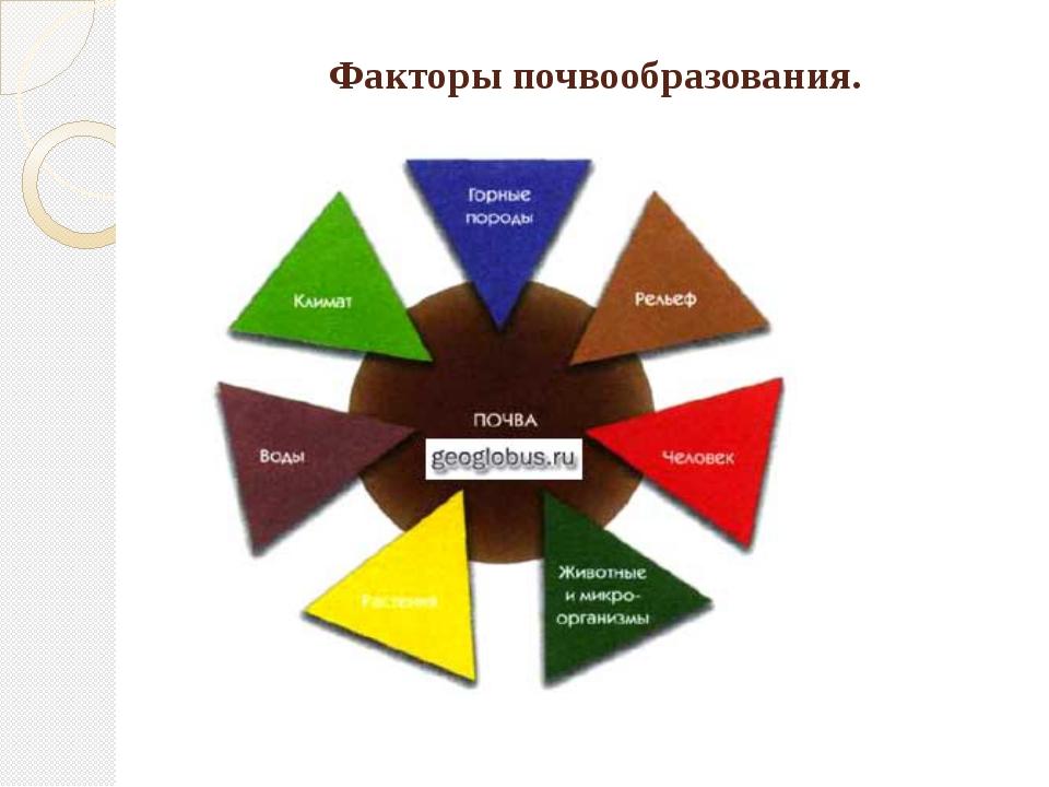 Факторы почвообразования.