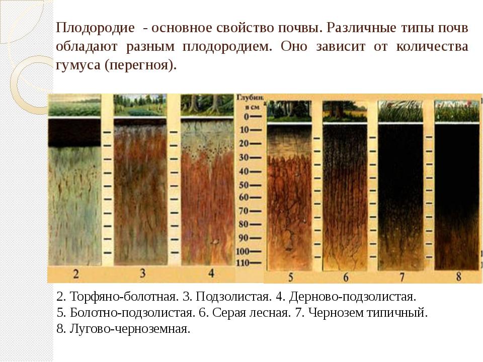 Плодородие - основное свойство почвы. Различные типы почв обладают разным пло...