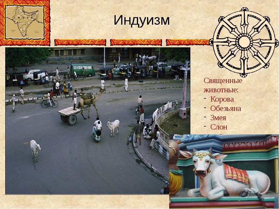 Индуизм Священные животные: Корова Обезьяна Змея Слон