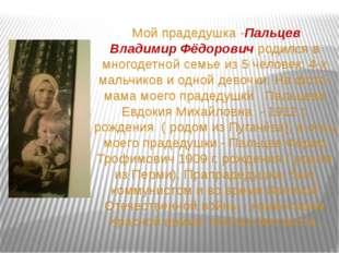 Мой прадедушка -Пальцев Владимир Фёдорович родился в многодетной семье из 5