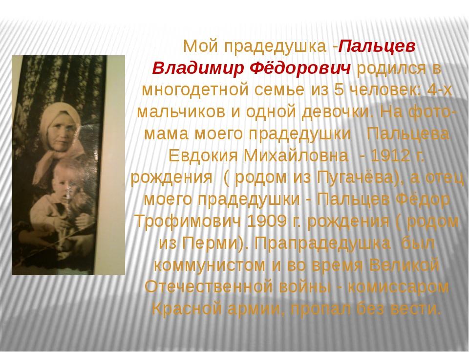 Мой прадедушка -Пальцев Владимир Фёдорович родился в многодетной семье из 5...
