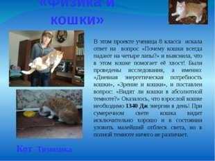 «Физика и кошки» Кот Тимошка В этом проекте ученица 8 класса искала ответ на