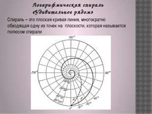 Логарифмическая спираль «Удивительное рядом» Спираль – это плоская кривая лин