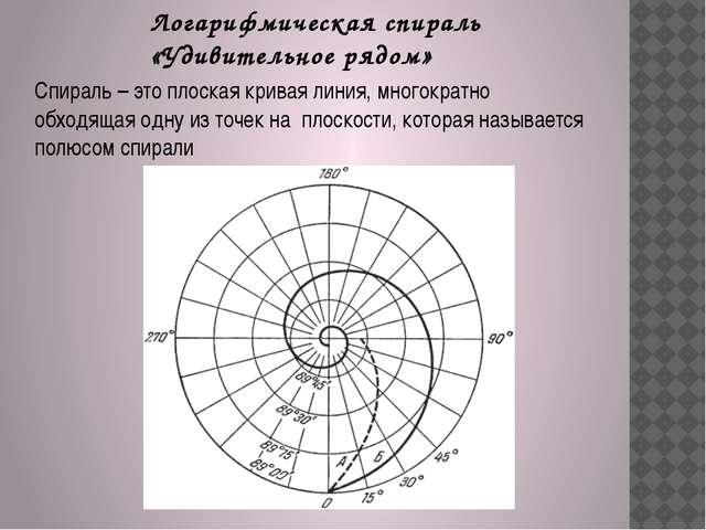 Логарифмическая спираль «Удивительное рядом» Спираль – это плоская кривая лин...