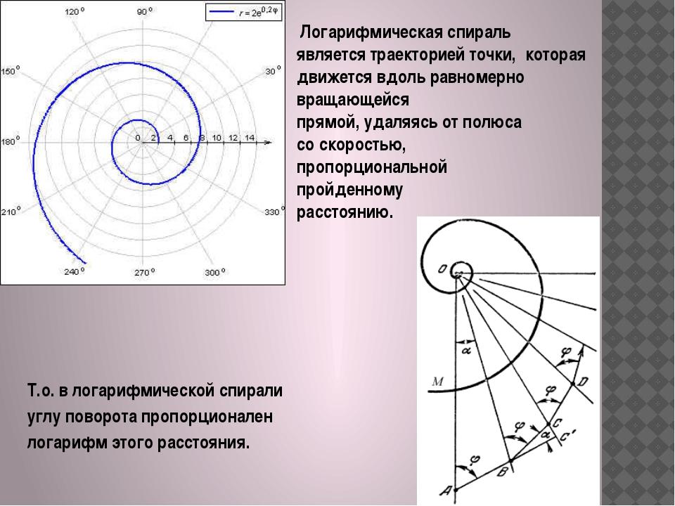 Логарифмическая спираль является траекторией точки, которая движется вдоль р...