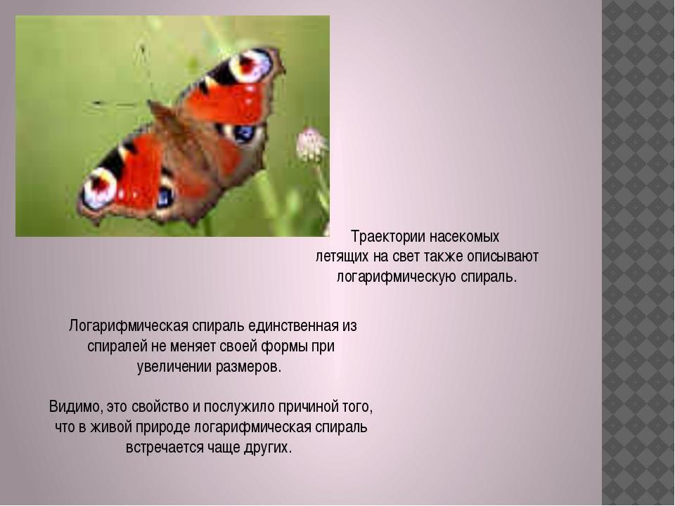 Траектории насекомых летящих на свет также описывают логарифмическую спираль....