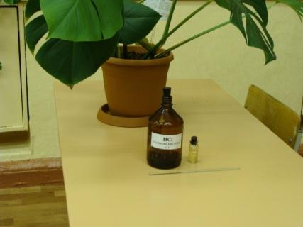 C:\Documents and Settings\User\Рабочий стол\НАУЧКА ПО БИОЛОГИИ\Цветочек, соляная кислота и палочка.JPG