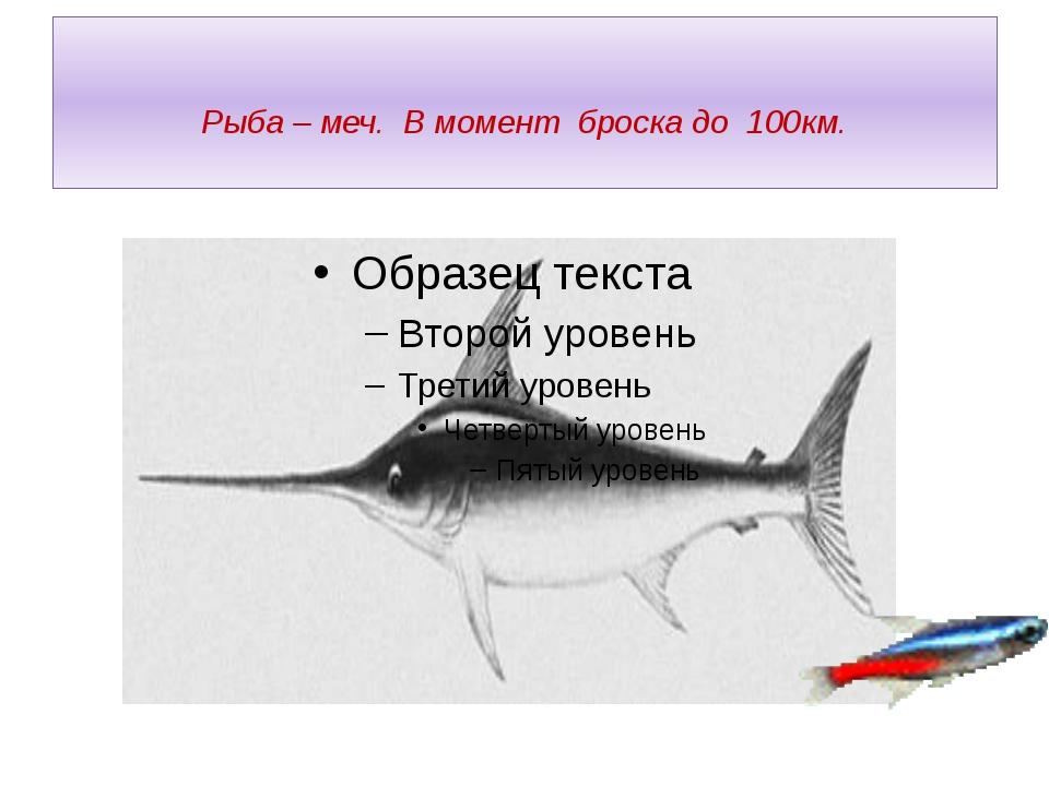 Рыба – меч. В момент броска до 100км.