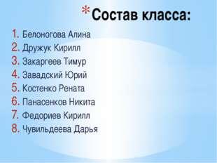 Белоногова Алина Дружук Кирилл Закаргеев Тимур Завадский Юрий Костенко Рената