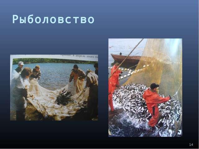 Рыболовство *
