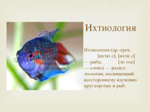 Ихтиология Ихтиология (др.-греч. ἰχθύς [ихтю́с], [ихти́с] — рыба; λόγος [ло́г