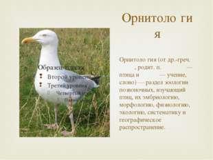 Орнитоло́гия Орнитоло́гия (от др.-греч. ὄρνις, родит. п. ὄρνιθος — птица и λό