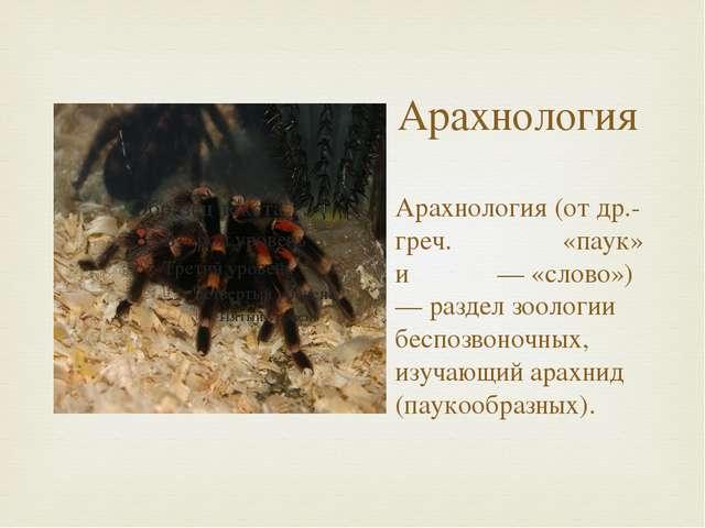 Арахнология Арахнология (от др.-греч. ἀράχνη «паук» и λόγος — «слово») — разд...