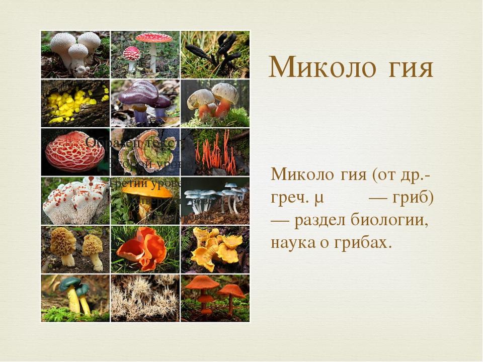 Миколо́гия Миколо́гия (от др.-греч. μύκης — гриб) — раздел биологии, наука о...