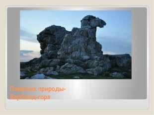 Памятник природы- Верблюд-гора