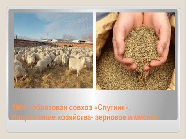 1964 –образован совхоз «Спутник». Направление хозяйства- зерновое и мясное