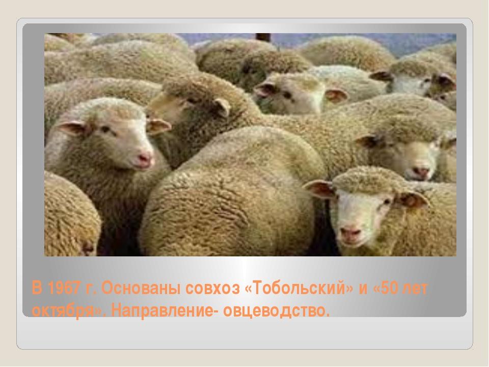 В 1967 г. Основаны совхоз «Тобольский» и «50 лет октября». Направление- овцев...