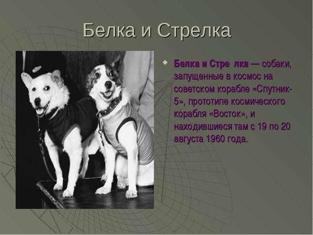 Белка и Стрелка Белка и Стре́лка— собаки, запущенные в космос на советском к...