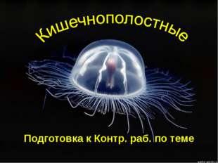 Подготовка к Контр. раб. по теме