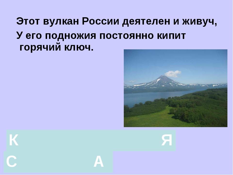Этот вулкан России деятелен и живуч, У его подножия постоянно кипит горячий...