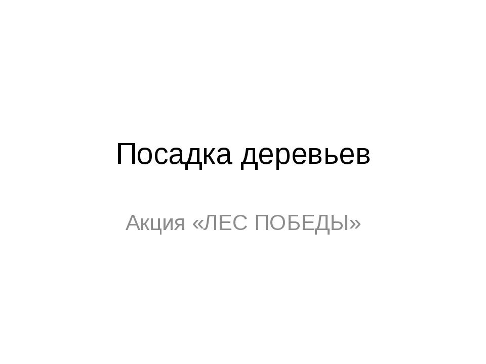 Посадка деревьев Акция «ЛЕС ПОБЕДЫ»