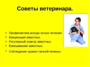Советы ветеринара.  Профилактика всегда лучше лечения. Вакцинация животных.