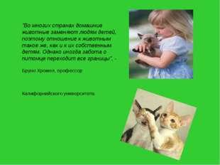 """""""Во многих странах домашние животные заменяют людям детей, поэтому отношение"""