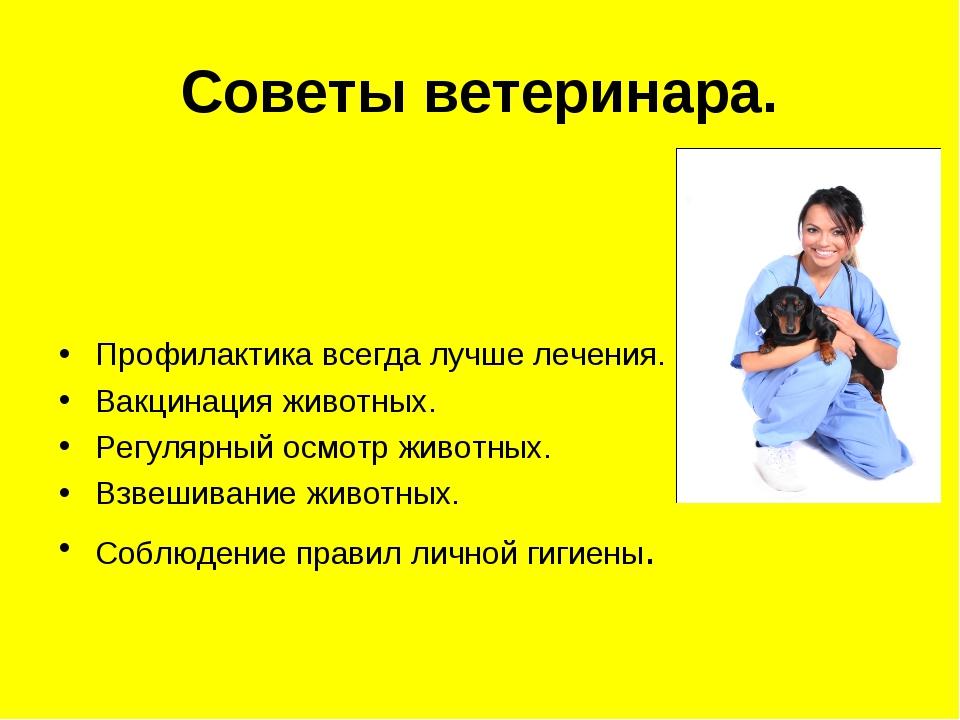 Советы ветеринара.  Профилактика всегда лучше лечения. Вакцинация животных....