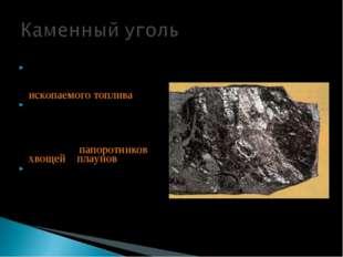 У́голь был первым из используемых человеком видов ископаемого топлива Каменны