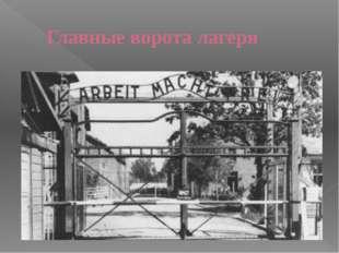 Главные ворота лагеря