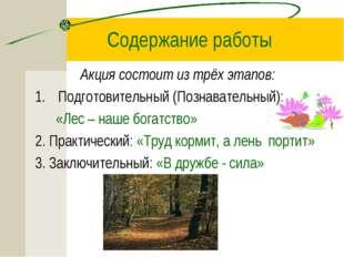 Содержание работы Акция состоит из трёх этапов: Подготовительный (Познаватель