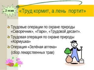 «Труд кормит, а лень портит» Трудовые операции по охране природы «Скворечник
