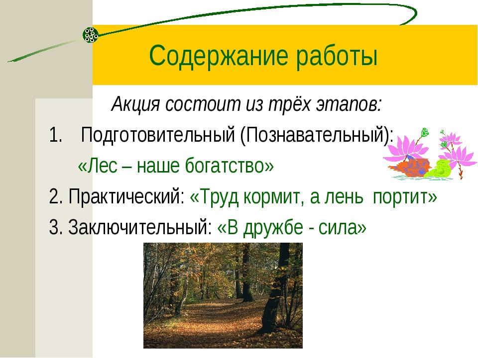Содержание работы Акция состоит из трёх этапов: Подготовительный (Познаватель...