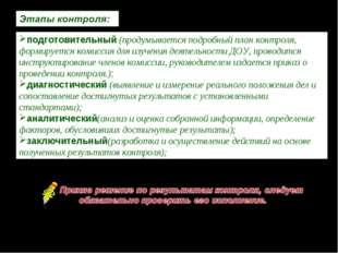 Акт проверки № 100 | МДОБУ