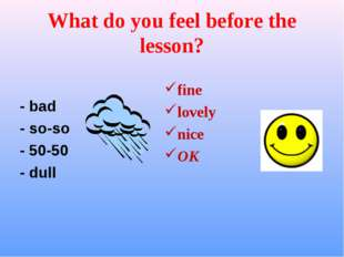 What do you feel before the lesson? - bad - so-so - 50-50 - dull fine lovely