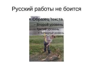 Русский работы не боится