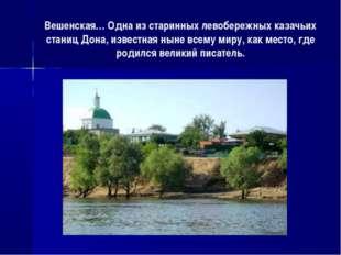 Вешенская… Одна из старинных левобережных казачьих станиц Дона, известная нын