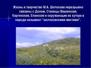 Жизнь и творчество М.А. Шолохова неразрывно связаны с Доном. Станицы Вешенска