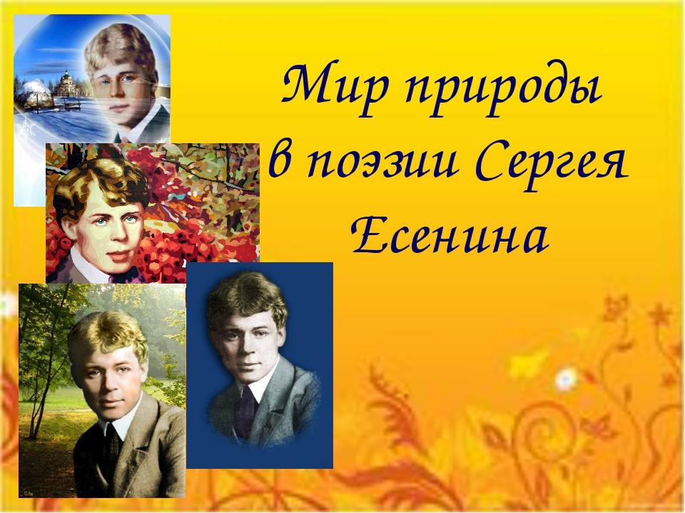 Мир природы в поэзии Сергея Есенина