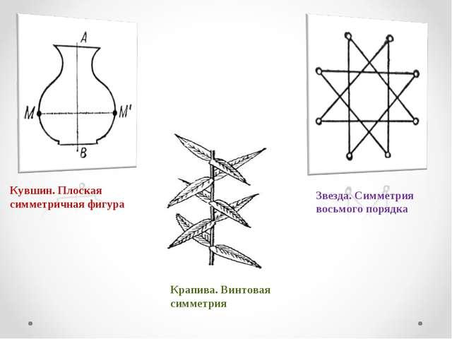 Кувшин. Плоская симметричная фигура Крапива. Винтовая симметрия Звезда. Симме...