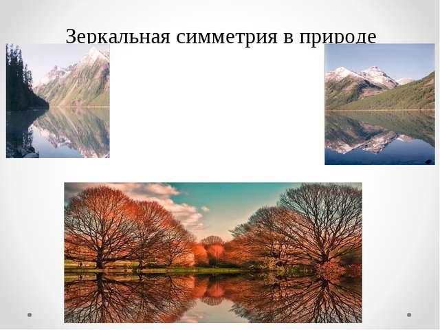 Зеркальная симметрия в природе